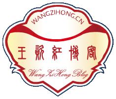 WangZiHongBlog236x202.png